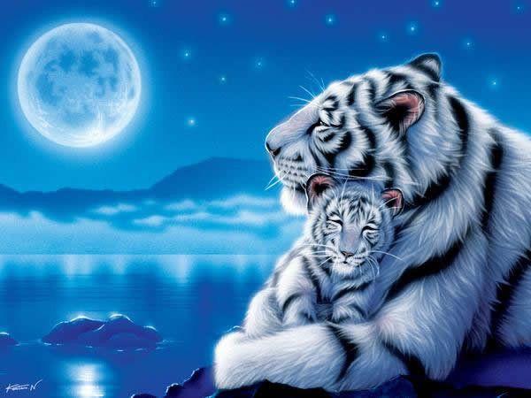 Les animaux de la savane page 27 - Photo de tigre a imprimer ...