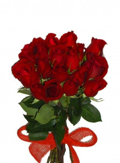 Tube fleurs bouquet de roses rouge for Bouquet rose rouge
